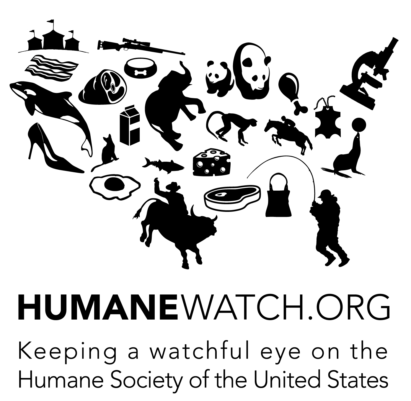 the importance of protecting animal rights in the united states Humane society of the united states has alienated any number of more progressive supporters by celebrating victories for animals that look more like deals with the devil to the abolitionist wing of the animal rights/welfare movement.