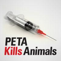 PKA syringe pic