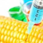 Syringe Corn