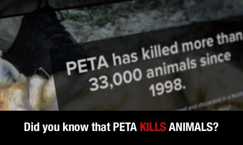 PETA Kills Animals Slider